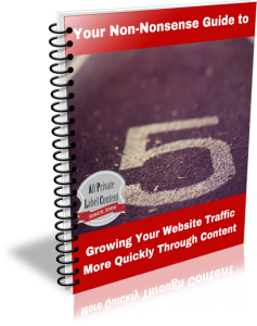 Traffic from PLR Guide