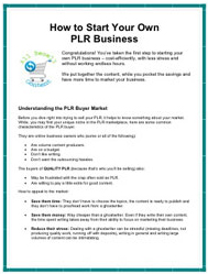 PLR Business Guide