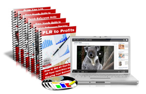 PLR to Profits Course